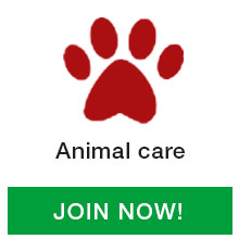 Animal-Care-icon