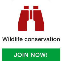 Wildlife-conservation