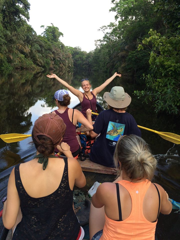 costa rica essay Tourism term papers (paper 8371) on costa rica : costa rica known for it s natural beauty and gracious people is a small country located in central america.